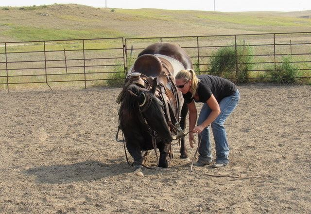 Acero learning to bow